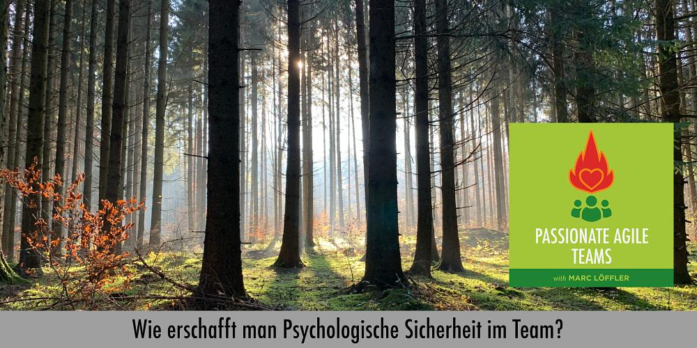 Wald und Podcast-Titel: Wie erschafft man psychologische Sicherheit im Team